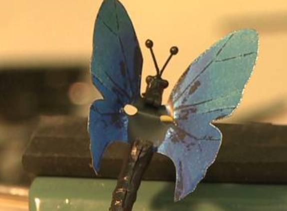 microsoftbutterfly